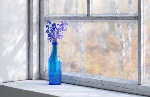 رندر استودیو عکسبرداری کلوزاپ بطری گلدان گل شببو A7AI4908