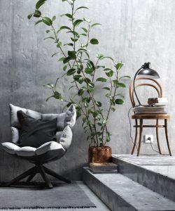رندر استودیو عکسبرداری کلوزاپ مبل راحتی گلدان بلند صندلی لهستانی A7AI4911