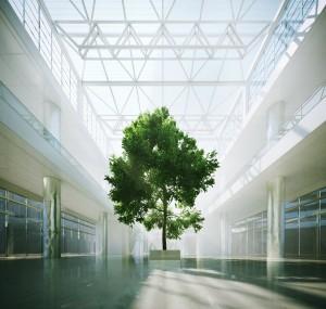 صحنه فضای عمومی مرکز تجاری با نورگیر درخت مدل آماده رندر | A7AI2610