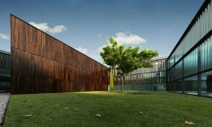 صحنه فانتزی حیاط شرکت چمن برگ درخت پاییز نما چوب شیشه مدل آماده رندر | ZA6AE0710