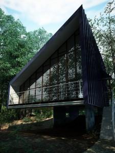 صحنه ساختمان ویلا وسط جنگل درخت نما خاص شیشه سقف شیروانی نورپردازی روز مدل آماده رندر | ZA6AE1103